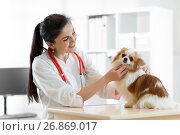 smiling Veterinarian with dog, on table in vet clinic. Стоковое фото, фотограф Оксана Кузьмина / Фотобанк Лори
