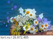 Купить «Букет полевых цветов на фоне воды», фото № 26872485, снято 14 июля 2017 г. (c) Татьяна Белова / Фотобанк Лори