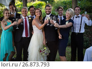 Newly married couple and guests holding glasses of champagne. Стоковое фото, агентство Wavebreak Media / Фотобанк Лори