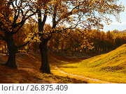 Купить «Autumn colorful landscape in sunny autumn landscape park lit by sunlight. Autumn park in soft sunlight», фото № 26875409, снято 26 мая 2017 г. (c) Зезелина Марина / Фотобанк Лори