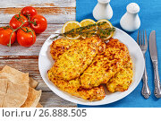 Купить «Baked Chicken breas on white plate», фото № 26888505, снято 24 августа 2019 г. (c) Oksana Zh / Фотобанк Лори