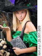 Купить «vertical portrait of a beautiful witch with a magic book in his hands», фото № 26901609, снято 3 октября 2016 г. (c) Константин Лабунский / Фотобанк Лори