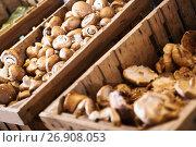 Купить «mushrooms in store», фото № 26908053, снято 18 июля 2018 г. (c) Яков Филимонов / Фотобанк Лори