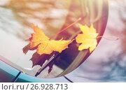 Купить «close up of car wiper with autumn leaves», фото № 26928713, снято 12 октября 2016 г. (c) Syda Productions / Фотобанк Лори