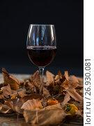 Купить «Wineglass glass amidst dry leaves», фото № 26930081, снято 11 апреля 2017 г. (c) Wavebreak Media / Фотобанк Лори