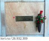 Купить «A general view of Marilyn Monroe's resting place at Westwood Village Memorial Park Cemetery, Los Angeles Marilyn Monroe's enduring stardom Words by Mark...», фото № 26932309, снято 26 мая 2016 г. (c) age Fotostock / Фотобанк Лори