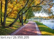 Купить «Ветви-волны Bends of branches of a tree», фото № 26950205, снято 1 октября 2016 г. (c) Baturina Yuliya / Фотобанк Лори