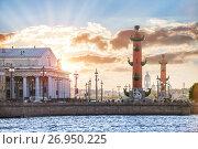 Купить «Ростральные колонны и закат Rostral columns and sunset», фото № 26950225, снято 10 июля 2017 г. (c) Baturina Yuliya / Фотобанк Лори