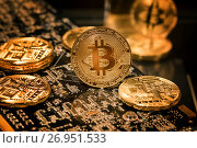 Золотые монеты криптовалюты Биткоин лежат на плате видеокарты для майнинга блоков блокчейна. Стоковое фото, фотограф Николай Винокуров / Фотобанк Лори