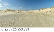 Купить «Sand Dune panorama», фото № 26953889, снято 19 июля 2017 г. (c) Geraldas Galinauskas / Фотобанк Лори