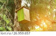 Купить «Wooden birdhouse painted with green lines», видеоролик № 26959657, снято 15 сентября 2017 г. (c) BestPhotoStudio / Фотобанк Лори