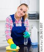 Купить «portrait of young woman cleaning», фото № 26961897, снято 23 мая 2018 г. (c) Яков Филимонов / Фотобанк Лори