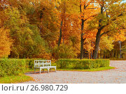 Купить «Autumn landscape. Wooden bench in the autumn park under yellowed autumn trees», фото № 26980729, снято 21 сентября 2017 г. (c) Зезелина Марина / Фотобанк Лори