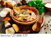 Купить «Грибной суп в миске на столе. Домашняя кухня», фото № 27009177, снято 27 сентября 2017 г. (c) Надежда Мишкова / Фотобанк Лори