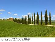 farmhouse and cypresses in Tuscany (2017 год). Стоковое фото, фотограф Михаил Коханчиков / Фотобанк Лори