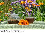 Купить «Чай с календулой и мятой», фото № 27010245, снято 26 июля 2017 г. (c) Елена Коромыслова / Фотобанк Лори