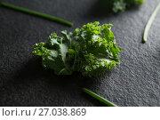 Купить «Close up of fresh kale on slate», фото № 27038869, снято 12 июня 2017 г. (c) Wavebreak Media / Фотобанк Лори