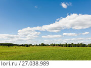 Купить «Сельский пейзаж. Скошенное поле», эксклюзивное фото № 27038989, снято 17 августа 2017 г. (c) Макаров Алексей / Фотобанк Лори