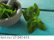 Купить «Mint leaves with mortar and pestle on wooden table», фото № 27047613, снято 5 июня 2017 г. (c) Wavebreak Media / Фотобанк Лори
