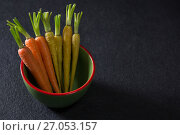 Купить «Carrots in bowl on black background», фото № 27053157, снято 12 июня 2017 г. (c) Wavebreak Media / Фотобанк Лори