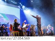 """Купить «Orchestra Concert """"Other Band"""" plays """"Depeche Mode""""», фото № 27054569, снято 27 февраля 2016 г. (c) Евгений Ткачёв / Фотобанк Лори"""