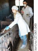 Купить «Smiling male farmer and female veterinarian», фото № 27061049, снято 21 октября 2018 г. (c) Яков Филимонов / Фотобанк Лори