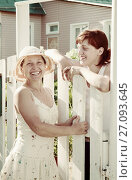 Купить «happy women near fence wicket», фото № 27093645, снято 5 июня 2011 г. (c) Яков Филимонов / Фотобанк Лори