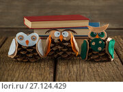 Owl decorated with pine cone and book stack on wooden table. Стоковое фото, агентство Wavebreak Media / Фотобанк Лори