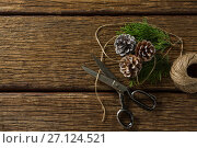 Купить «Overhead view of pine cones with scissor and thread spool», фото № 27124521, снято 8 июня 2017 г. (c) Wavebreak Media / Фотобанк Лори