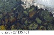 Купить «Video of closeup mooving along tracery edge of an ice floe on Altai river Katun in Spring season», видеоролик № 27135401, снято 16 марта 2017 г. (c) Serg Zastavkin / Фотобанк Лори