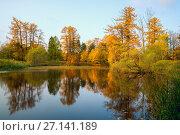 Купить «On the shore of a calm pond in the fall», фото № 27141189, снято 17 октября 2017 г. (c) Алексей Маринченко / Фотобанк Лори