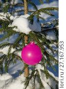 Купить «Розовый елочный шар висит на заснеженной ветке ели», эксклюзивное фото № 27167953, снято 11 января 2017 г. (c) Елена Коромыслова / Фотобанк Лори