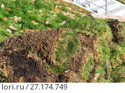 Купить «The rolled lawn folded in stacks», фото № 27174749, снято 2 ноября 2017 г. (c) Володина Ольга / Фотобанк Лори
