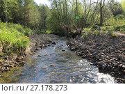 Купить «Clean fresh water forest stream», фото № 27178273, снято 21 мая 2016 г. (c) Евгений Ткачёв / Фотобанк Лори