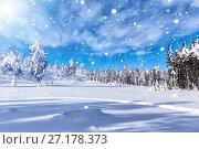 Купить «Winter forest against mountains», фото № 27178373, снято 2 марта 2014 г. (c) Евгений Ткачёв / Фотобанк Лори