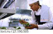 Купить «Male chef garnishing appetizer plates at order station 4k», видеоролик № 27190505, снято 22 июля 2018 г. (c) Wavebreak Media / Фотобанк Лори