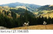 Купить «Image of Karpaty mountains on Bucovina in Romania.», видеоролик № 27194005, снято 6 октября 2017 г. (c) Яков Филимонов / Фотобанк Лори