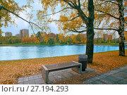 Купить «Осенний пейзаж в городском парке со скамейкой, березами и водоемом», фото № 27194293, снято 17 октября 2017 г. (c) Татьяна Белова / Фотобанк Лори
