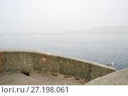 Купить «Санкт-Петербург. Туманное утро. Гранитный парапет Невы», эксклюзивное фото № 27198061, снято 18 сентября 2017 г. (c) Александр Алексеев / Фотобанк Лори