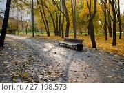 Купить «Осенний пейзаж в городском парке со скамейкой, березами и водоемом», фото № 27198573, снято 17 октября 2017 г. (c) Татьяна Белова / Фотобанк Лори