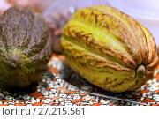 Купить «Какао плоды», фото № 27215561, снято 5 марта 2016 г. (c) Татьяна Белова / Фотобанк Лори