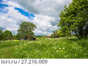 Купить «In the Russian village in the summer», фото № 27216009, снято 28 июня 2017 г. (c) Валерий Смирнов / Фотобанк Лори
