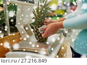 Купить «customer with pineapple on scale at grocery store», фото № 27216849, снято 2 ноября 2016 г. (c) Syda Productions / Фотобанк Лори