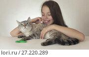 Купить «Beautiful cheerful teen girl with a cat playing with green fidget spinner on white background stock footage video», видеоролик № 27220289, снято 3 ноября 2017 г. (c) Юлия Машкова / Фотобанк Лори