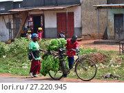 Купить «Slum dwellers in Kampala, Uganda, Africa», фото № 27220945, снято 26 августа 2010 г. (c) Знаменский Олег / Фотобанк Лори