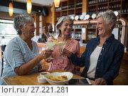 Купить «Senior female friends toasting glass of cocktail in bar», фото № 27221281, снято 22 августа 2017 г. (c) Wavebreak Media / Фотобанк Лори