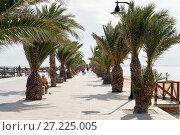 Promenade of San Pedro del Pinatar. Spain (2017 год). Стоковое фото, фотограф Alexander Tihonovs / Фотобанк Лори