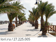 Купить «Promenade of San Pedro del Pinatar. Spain», фото № 27225005, снято 23 ноября 2017 г. (c) Alexander Tihonovs / Фотобанк Лори