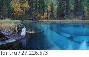 Купить «Panorama of Blue Geyser lake in Altai mountains in rainy day», видеоролик № 27226573, снято 19 октября 2017 г. (c) Serg Zastavkin / Фотобанк Лори