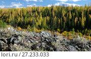 Купить «Video panorama of North Chuiskiy Ridge with stones on foreground and larch forest on background in Autumn. Altai», видеоролик № 27233033, снято 30 октября 2017 г. (c) Serg Zastavkin / Фотобанк Лори